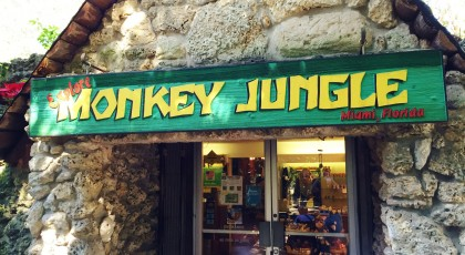 Monkey-Jungle_Miami1-420x230  - casa grande